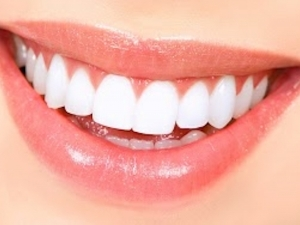 Parodontologia